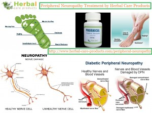 pudendal neuropathy