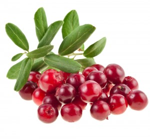 Cranberry for Epididymitis