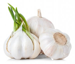 Garlic for Epididymitis