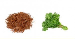 Coriander Leaves and Sandalwood Powder