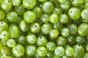 Gooseberries for Prickly Heat