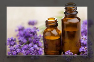 Lavender Essential Oil for Prickly Heat