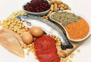 Quality Protein sources